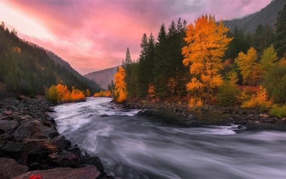 Fond d'écran Arbres, rivière, pierres, crépuscule, automne