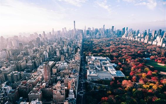 Fondos De Escritorio Parque De Navidad Hd Ciudades Del: EE.UU., Nueva York, Parque, árboles, Ciudad, Otoño