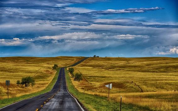 Обои США, природа, дорога, поля, трава, холмы