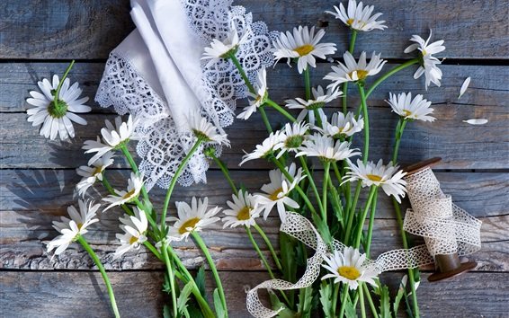 Wallpaper White chamomile flowers, napkin