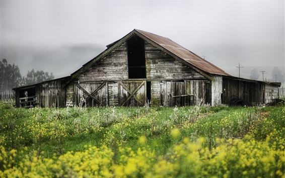Обои Деревянный дом, цветы, поле