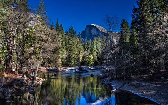 Fond d'écran Parc national de Yosemite, Californie, États-Unis, rivière, arbres, montagnes