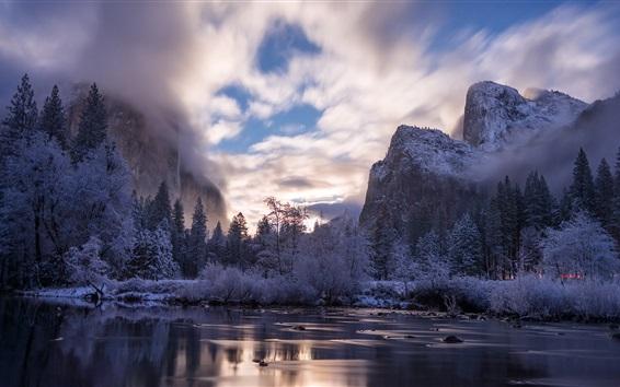 Обои Национальный парк Йосемити, Калифорния, США, деревья, озеро, горы, туман