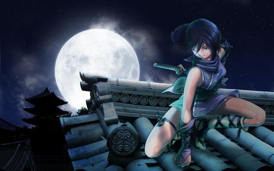 Wallpaper Anime girl, sword, roof, moon, night