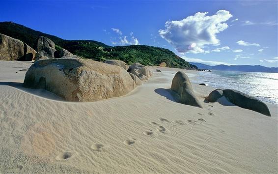 壁紙 ビーチ、砂、足跡、海