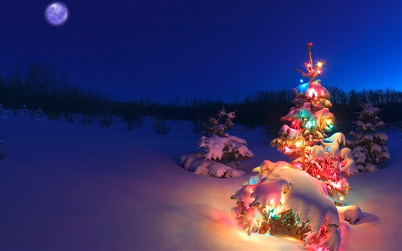 Wallpaper Beautiful Christmas tree, lights, snow, night