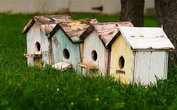 Fond d'écran Maisons à oiseaux, herbe