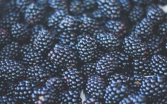 Wallpaper Blackberries, fruit close-up