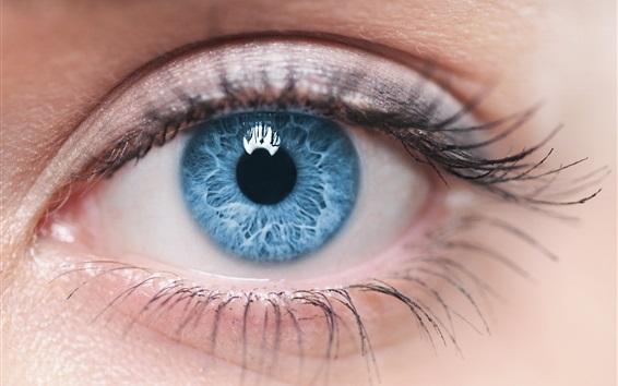 Wallpaper Blue eyes