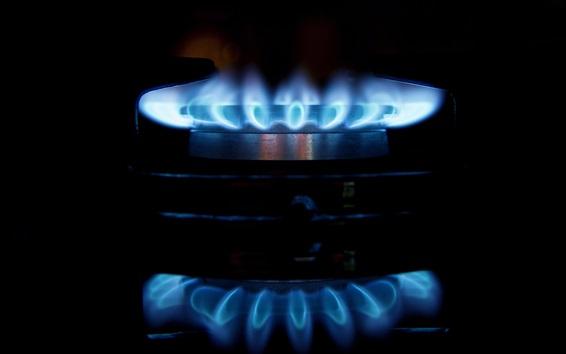 Обои Синий огонь, пламя, плита, горелка