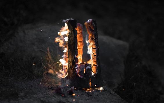 Wallpaper Bonfire, firewood, flame