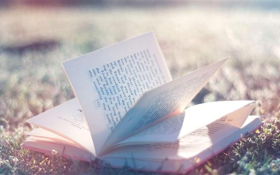 壁紙 本、草、日差し、グレア