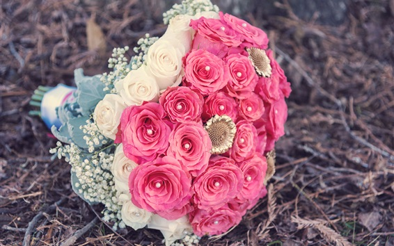 배경 화면 꽃다발 꽃, 빨간색과 흰색 장미