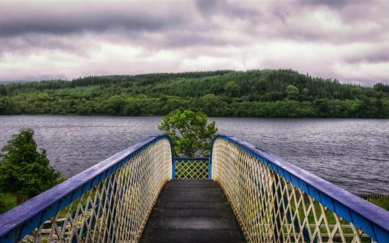 Wallpaper Bridge, river, trees, clouds