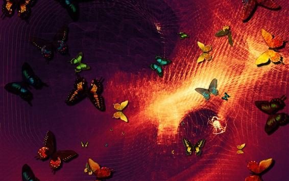 壁紙 蝶、抽象的な背景、デザイン