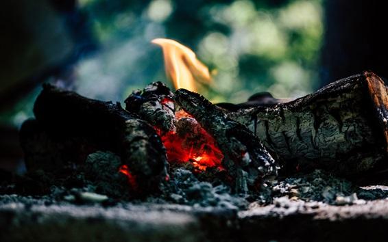 Wallpaper Coal, fire