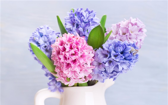 Wallpaper Colorful hyacinths flowers, eggs, Easter