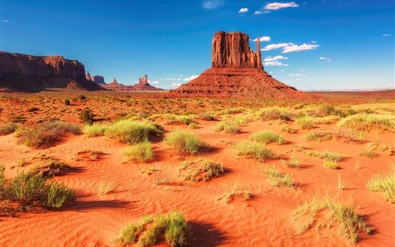 壁紙 砂漠、岩、山、草、アメリカ、アリゾナ州