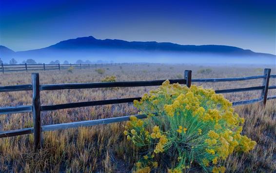 Wallpaper Fence, flowers, grass, clouds