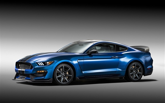 Wallpaper Ford Mustang Shelby GT350R blue supercar