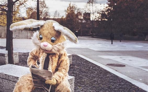 Обои Заяц костюм