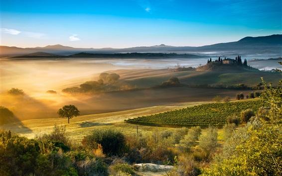 Fond d'écran Italie, Toscane, belle campagne