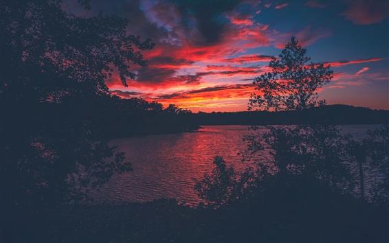 Wallpaper Lake Lanier, USA, trees, sunset