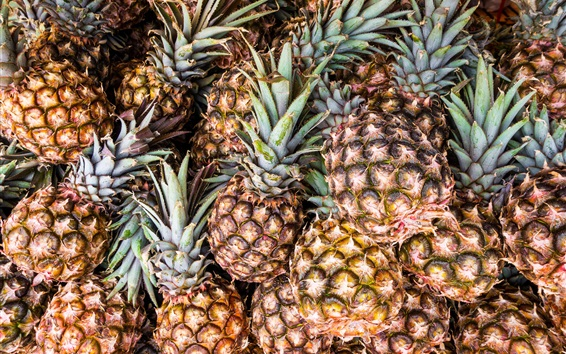 Wallpaper Many ripe pineapples