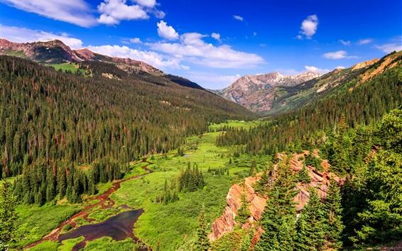 Papéis de Parede Montanhas, rochas, árvores, riacho, vale, Colorado, EUA