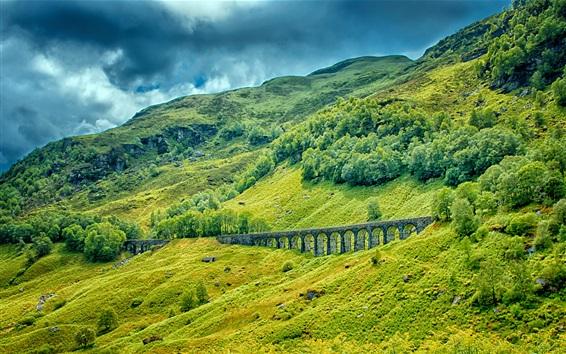 Обои Горы, деревья, трава, железная дорога, мост, зеленый