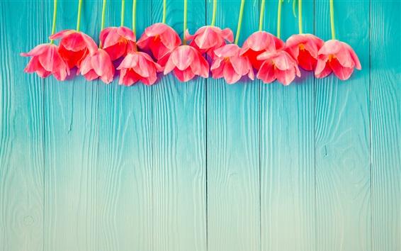 Обои Розовые тюльпаны, деревянная доска, фон