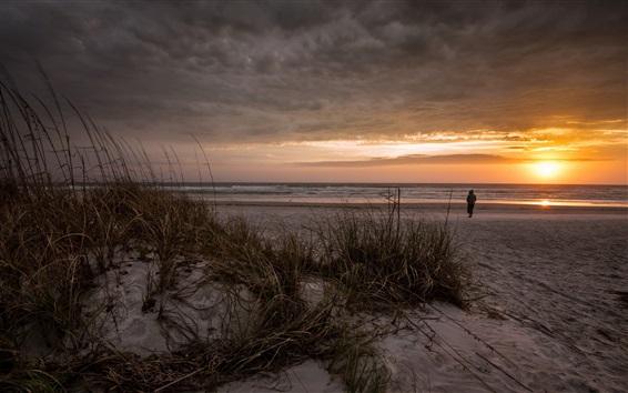 Wallpaper Sea, beach, grass, clouds, sunset