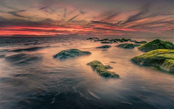 Обои Море, камни, мох, рассвет, облака, восход солнца