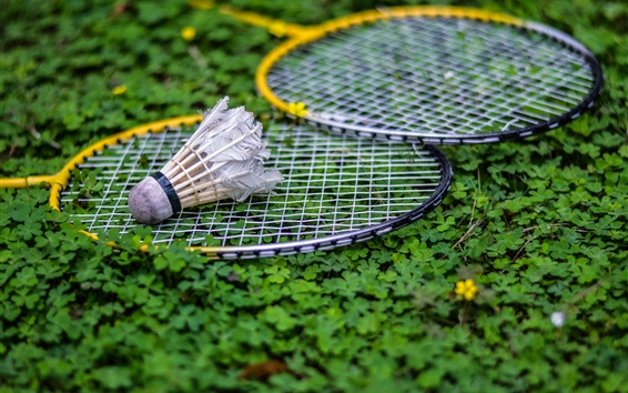 Wallpaper Shuttlecock, racket, grass