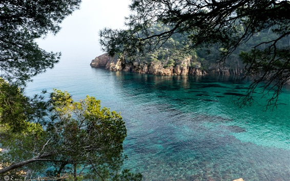 Wallpaper Spain, Girona, sea, bay, trees, nature