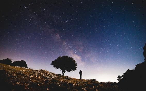Fond d'écran Étoile, silhouette, arbre, pente, homme