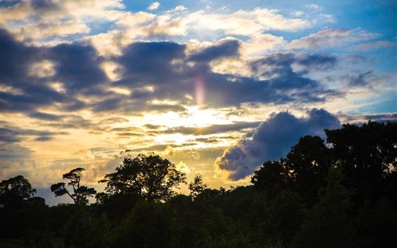 Wallpaper Sunset, clouds, trees, dusk