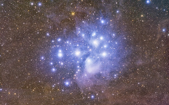 Wallpaper The Pleiades, star cluster, space