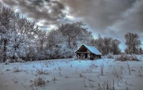 Fond d'écran Hiver, maison, arbres, neige, froid