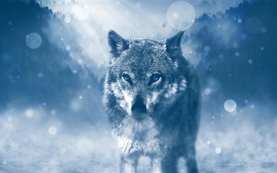 Papéis de Parede Lobo anda até você, olhos azuis, árvores, brilho