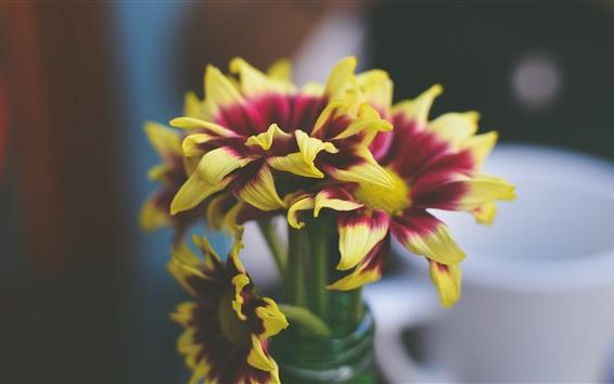 Wallpaper Yellow purple petals, flowers, vase