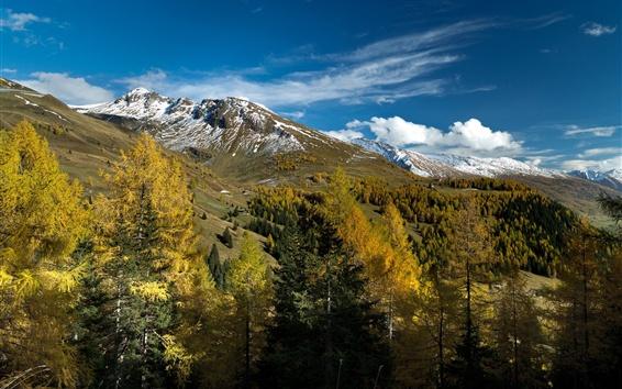 Wallpaper Alps, Austria, mountains, trees, clouds, autumn, Salzburg