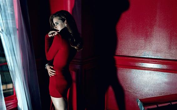 Fond d'écran Amy Adams 11