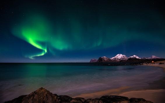 배경 화면 오로라 보 리 얼리스, 눈, 북극, 해안, 밤