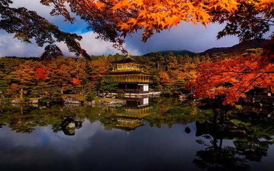 Papéis de Parede Outono, árvores, lago, casa, parque, Japão