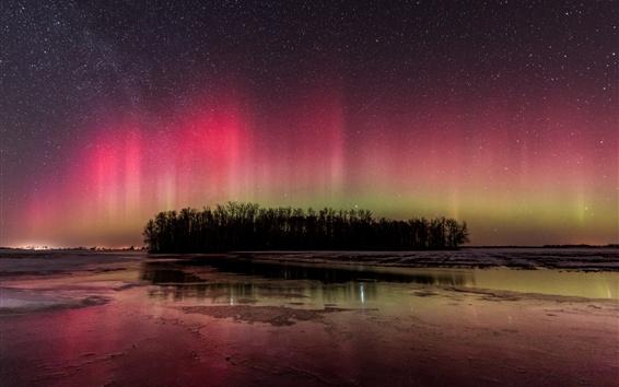 Papéis de Parede Belas luzes do norte, rio, árvores, noite, inverno, estrelas, céu
