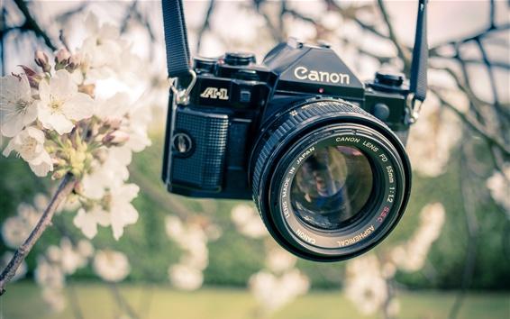 Обои Камера Canon, сад