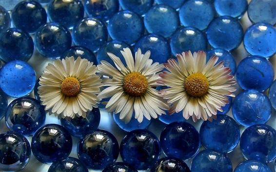 Wallpaper Chamomile and glass balls