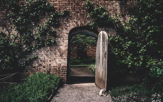 Wallpaper Climbing plants, wall, door