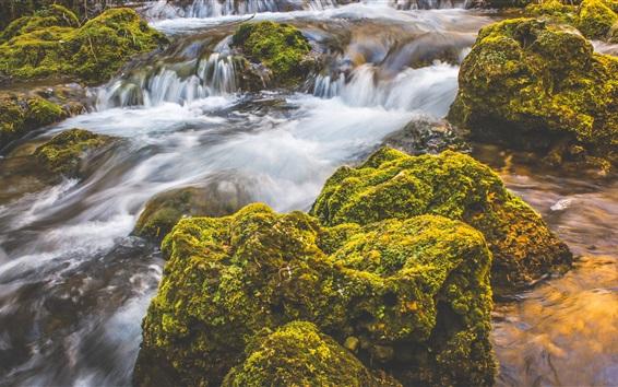 Fond d'écran Ruisseau, eau, cascades, pierres, mousse